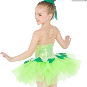 20401  Pixie Dust Fairy Character Dance Costume Back