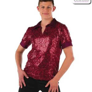 22072  Embroidered Sequin Mesh Guy Dance Top