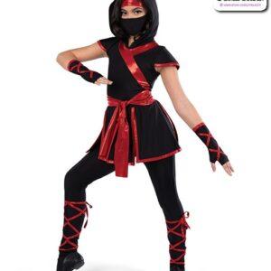 22924Y  Ninja Character Dance Costume