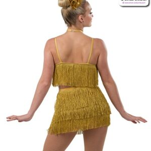 22926  Metallic Fringed Tap Jazz Dance Costume Back