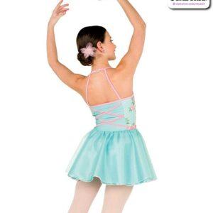 22977  Embroidered Swiss Dot Mesh Performance Ballet Dress Back