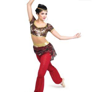 H474  Arabian Coffee Christmas Themed Dance Costume