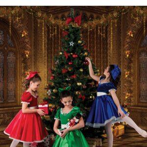 H568  Party Dresses Velvet Satin Lace Christmas Inspired Performance Character Dance Dressa