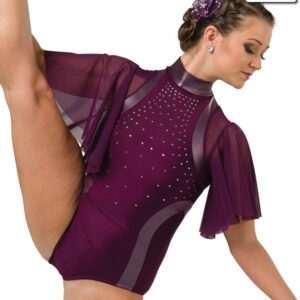 S269  Hold On Contemporary Competition Performance Dance Leotard Merlot